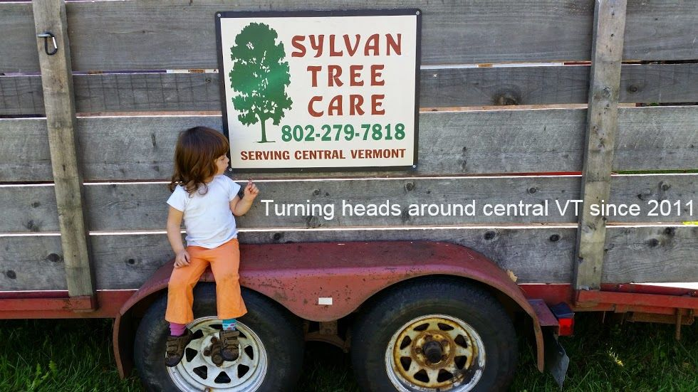 Sylvan Tree Care